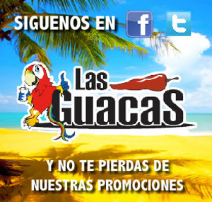 guacas1imagen-300x285